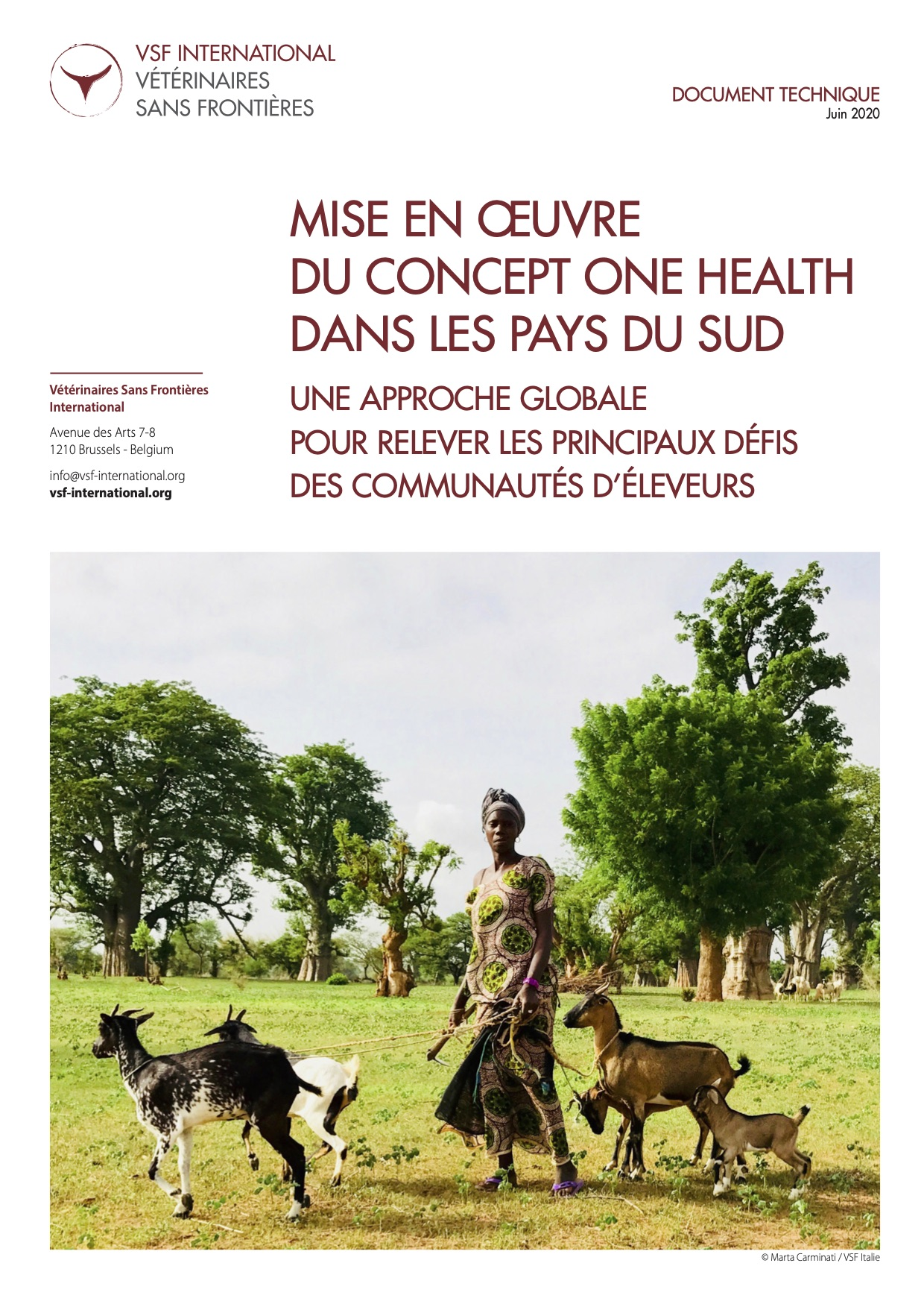 Mise en œuvre du concept One Health dans les pays du Sud : document technique de VSF-International Image principale