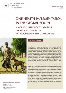 One Health implementation in the Global South: VSF International Policy Brief  Vignette