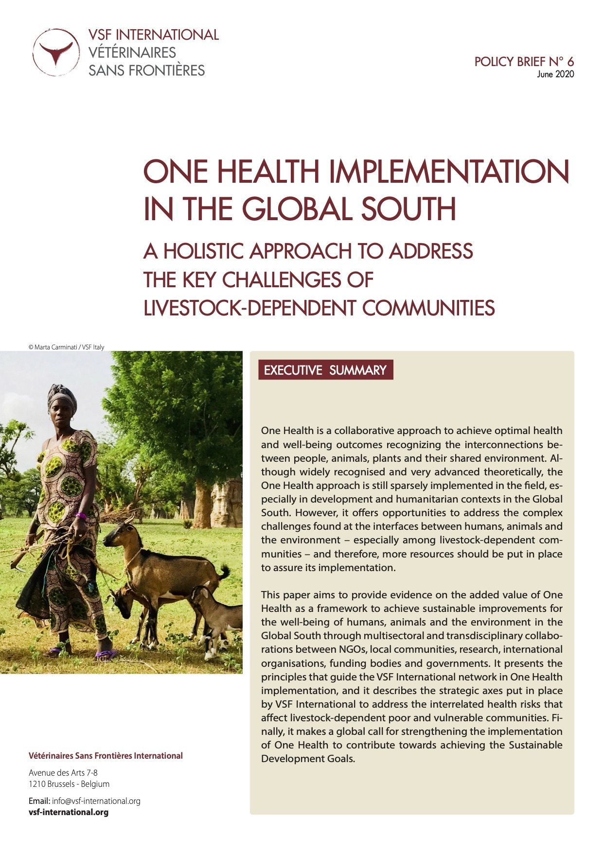 One Health implementation in the Global South: VSF International Policy Brief  Image principale