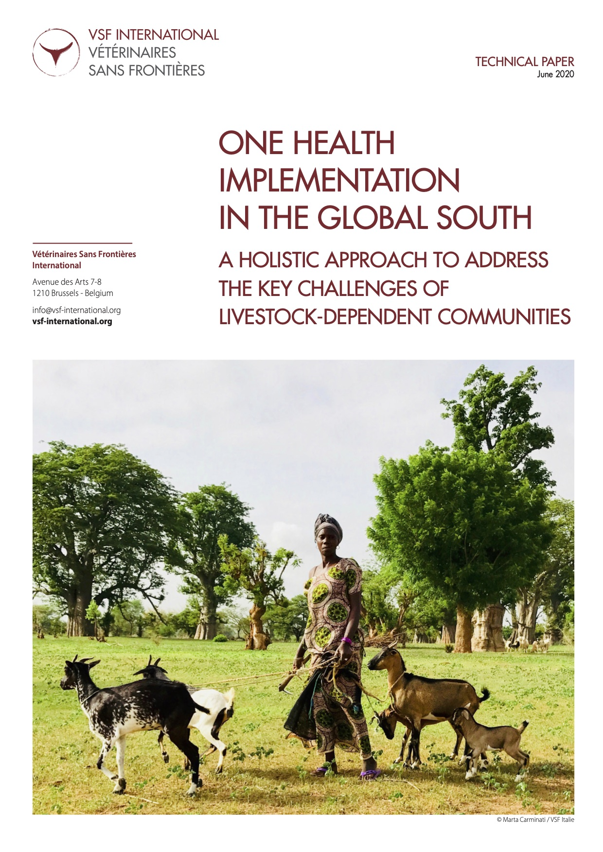 One Health implementation in the Global South: VSF-International Technical PAper Image principale