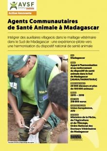 Les actions innovantes d'AVSF : Des agents communataires de santé animale à Madagascar  Vignette
