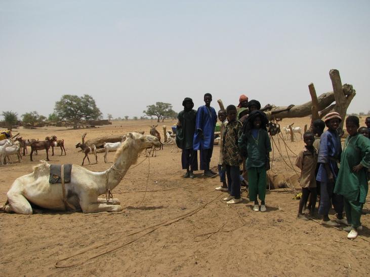 Des soignants à la rencontre des nomades Image principale