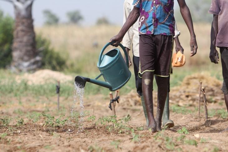 Gérer et partager l'eau : un défi majeur Image principale