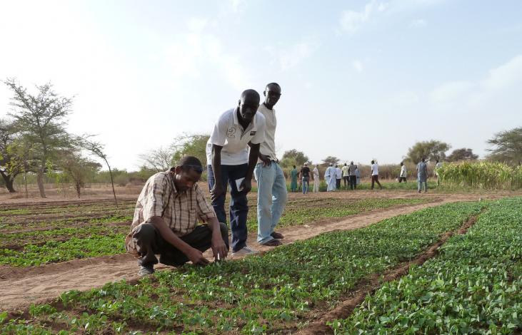 Face aux crises, aidons les paysans à développer des solutions durables Image principale