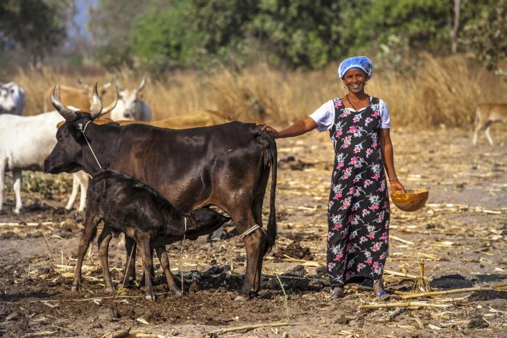 Les femmes paysannes: actrices essentielles du développement de leur pays Image principale