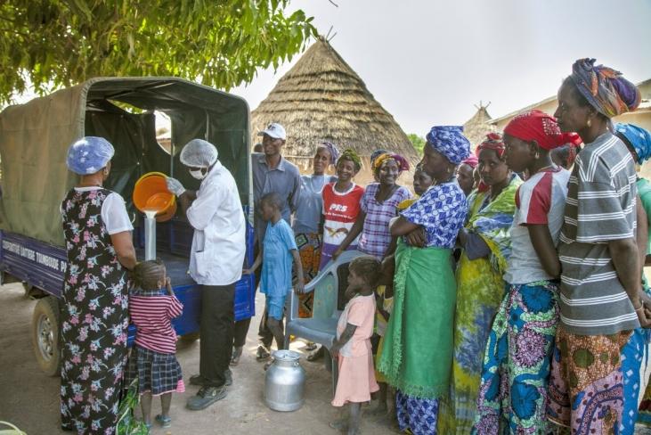 Guerres commerciales : miser sur le lait local au Sénégal Image principale
