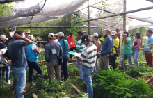 L'agroécologie pour la paix en Colombie Vignette
