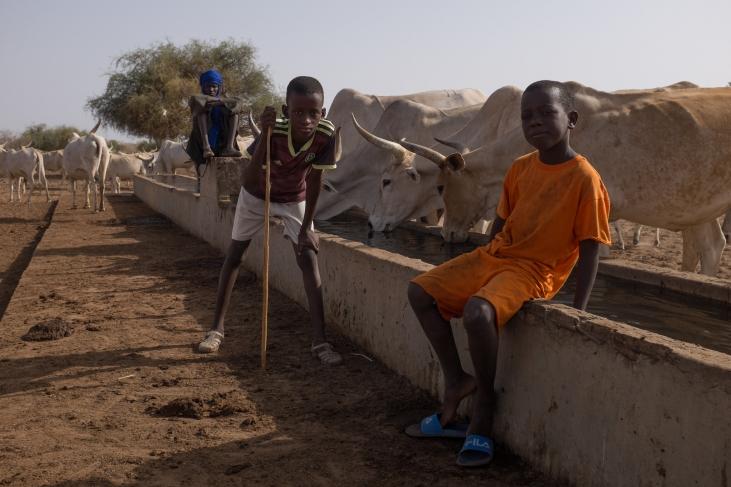 Thiellal : rendre concret le concept « One Health » dans les territoires de Haute Casamance Image principale