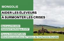 Mongolie : aider les éleveurs à surmonter les crises Vignette