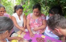 La jeunesse : moteur du changement au Honduras Vignette