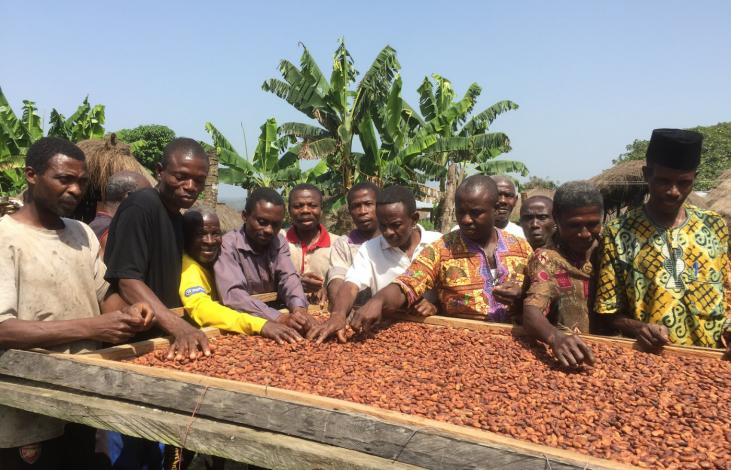 """Au cours du 2ème semestre 2021, MOABI organisera un webinaire sur """"les organisations économiques paysannes et le coopérativisme""""  Image principale"""