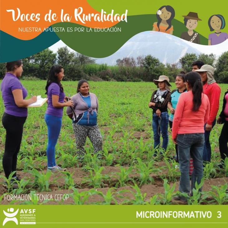 Perú: La educación rural más que una carencia, una oportunidad  Image principale