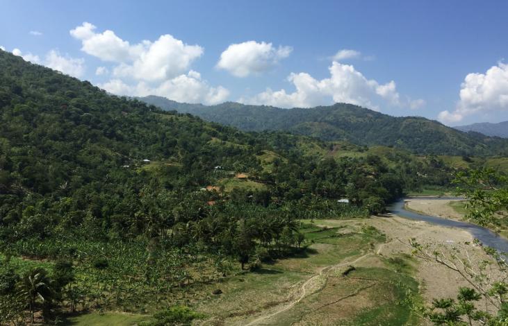 Haïti : des systèmes agroforestiers pour produire et protéger Image principale