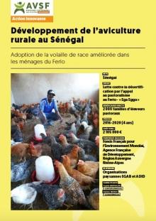 Développement de l'aviculture rurale au Sénégal Vignette
