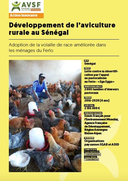 Développement de l'aviculture rurale au Sénégal Image principale