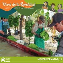 Regional: Retos de la educación, el trabajo y el empleo rural  Vignette