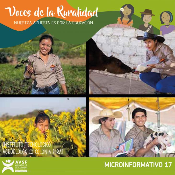 Experiencias formativas para la promoción del empleo y trabajo joven en la ruralidad: avances y temas pendientes Image principale