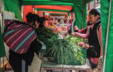 Pérou : Soutenir les marchés paysans Vignette