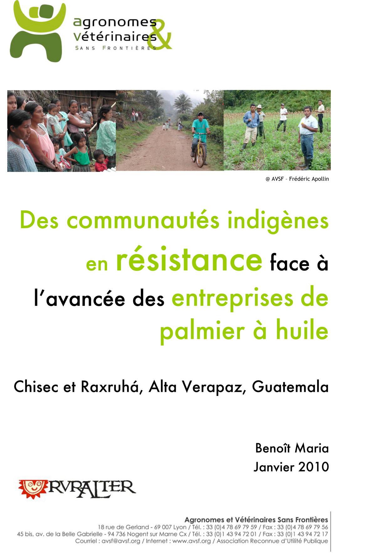 Thumbnail - Des communautés indigènes en résistance face à l'avancée des entreprises de palmiers à huile au Guatemala