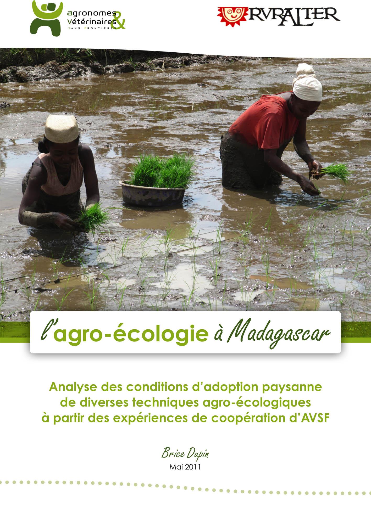 PDF Preview - L'agroécologie à Madagascar : analyse des conditions d'adoption paysanne de différentes techniques à partir de l'expérience d'AVSF