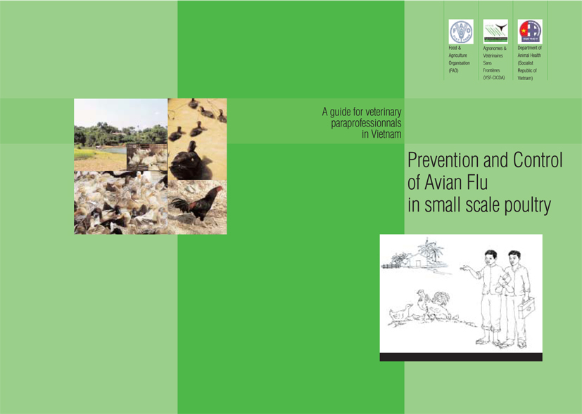 Thumbnail - Prevention and Control of Avian Flue in small scale poultry