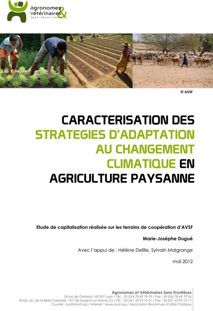 Thumbnail - Caractérisation des stratégies d'adaptation au changement climatique en agriculture paysanne