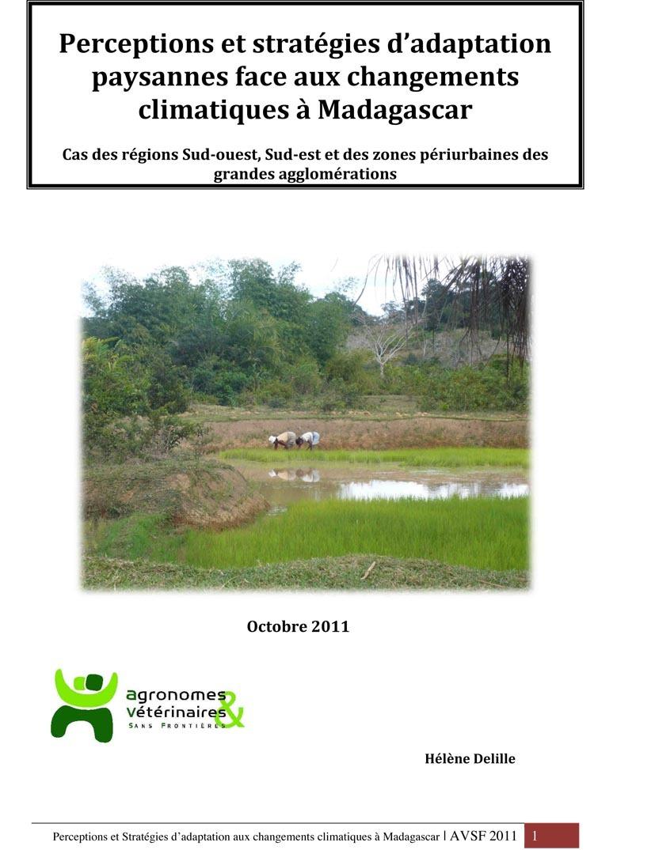 PDF Preview - Perceptions et stratégies d'adaptation paysannes face aux changements climatiques à Madagascar
