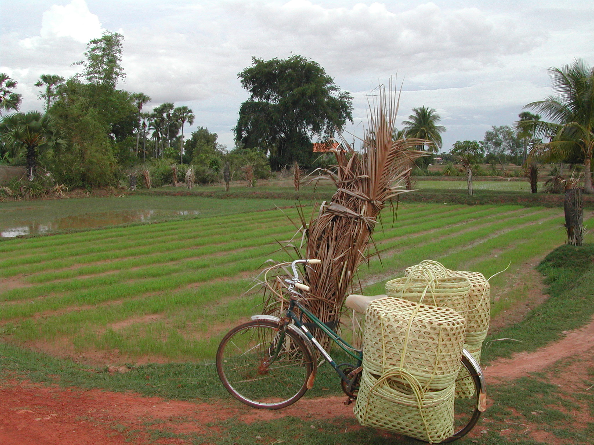 Cambodge2.JPG