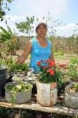Lutte contre la désertification au Nord Brésil Vignette