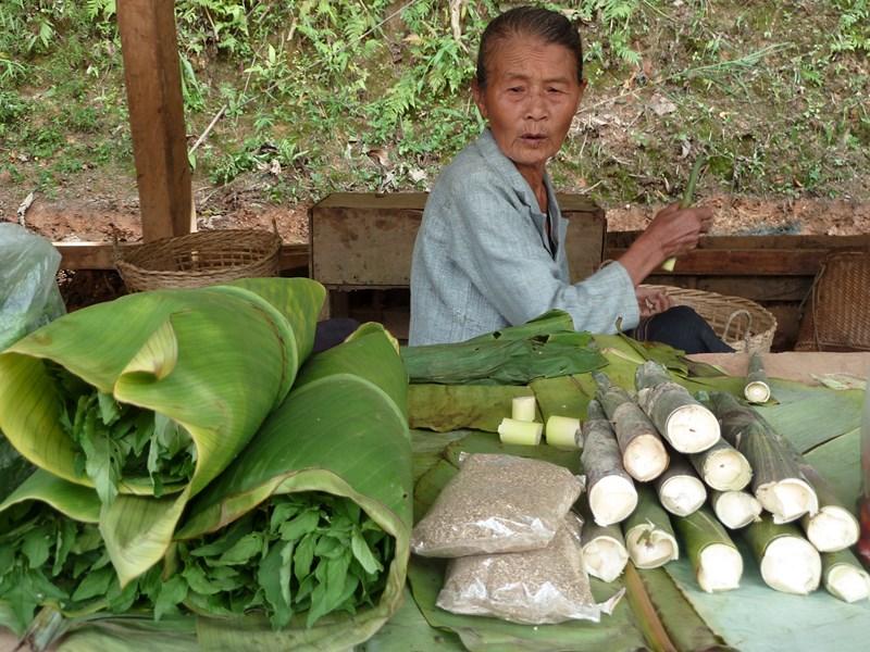 Vendeuse_NTFP_Oudomxai_Laos_FredericApollin_2013.JPG