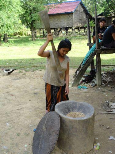 Elevage et maraîchage à Khammouane au Laos Image principale