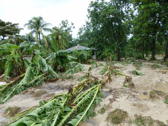 Haïti ravagé par le cyclone Sandy Image principale